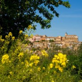 There's Something About Italy – Part Two – We're Going Where?