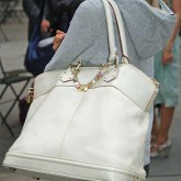 A big Handbag with a Shoulder Strap