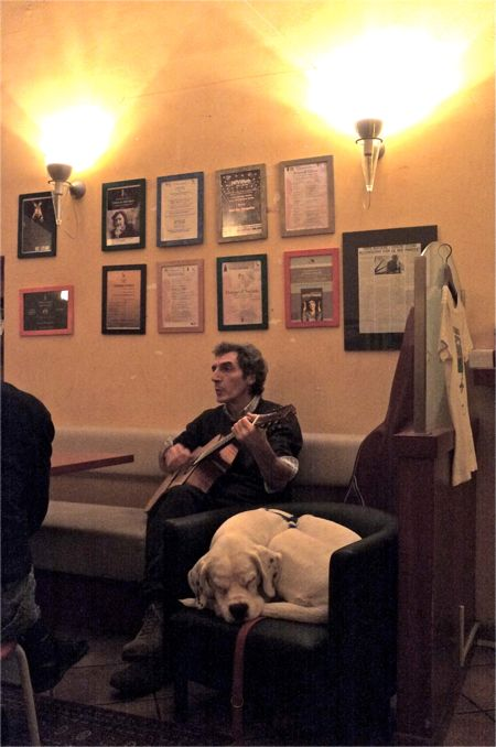 Guitarist and Dog