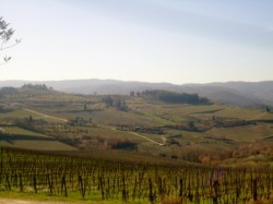 Hiking through Chianti