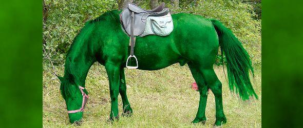 Giancarlo's Green Horse