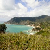 A Worthwhile Trip – Hiking the Cinque Terre