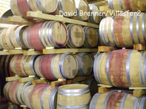 Take a tour of a winer's cellars during Cantine Aperte