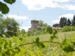 Frascarolo Castle