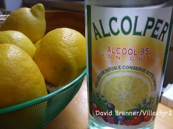 Time to start making your Limoncello