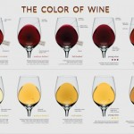 Wine Education for Your Wall