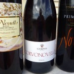 Tasting The New Crop – Italy's 2014 Vino Novello